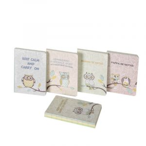 Sleeping Beauty Traders -Notebook Owl